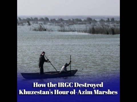 Silent Crime Against Iran's Nature and People
