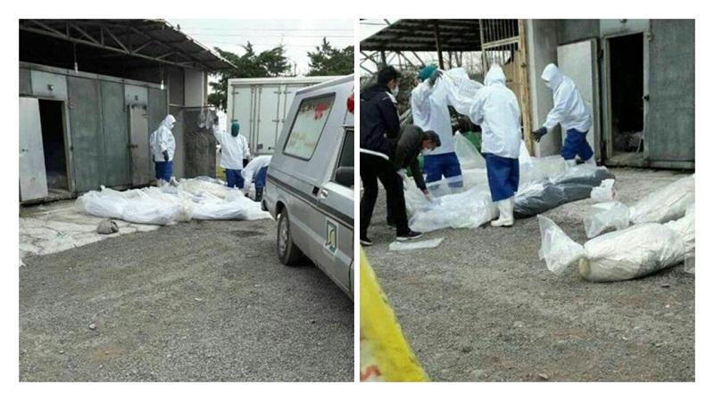 Images of coronavirus victims in Rasht-Iran