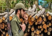 Iran's IRGC destroys Iran's forests